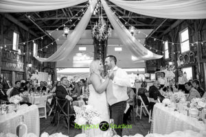 Wedding Reception Dance Photograph